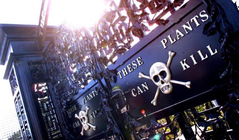 The Poisonous Garden of Death
